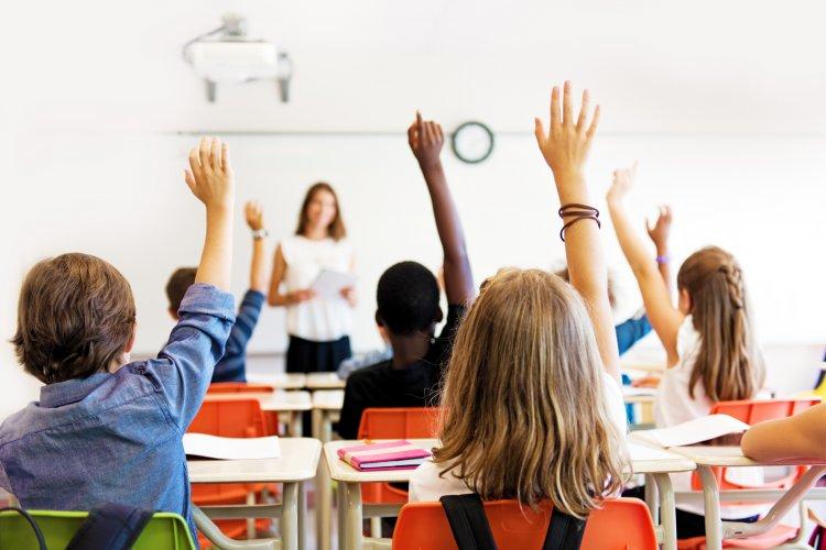 Senatori AUR cer Guvernului redeschiderea şcolilor. În caz contrar, vor înainta acţiuni în justiţie