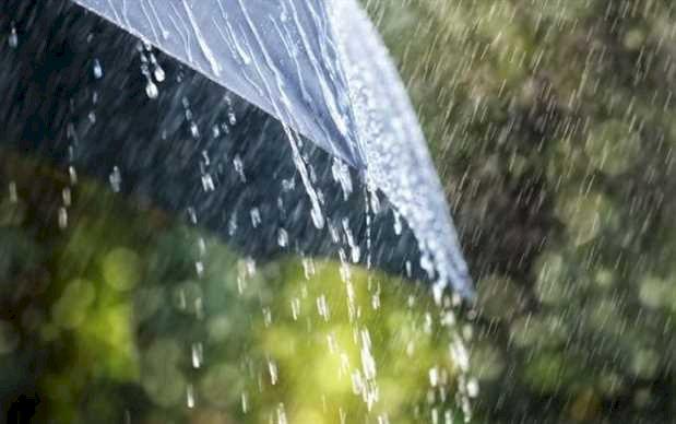 Avertizare meteo: Cod galben de vijelii și ploi torențiale în Dobrogea
